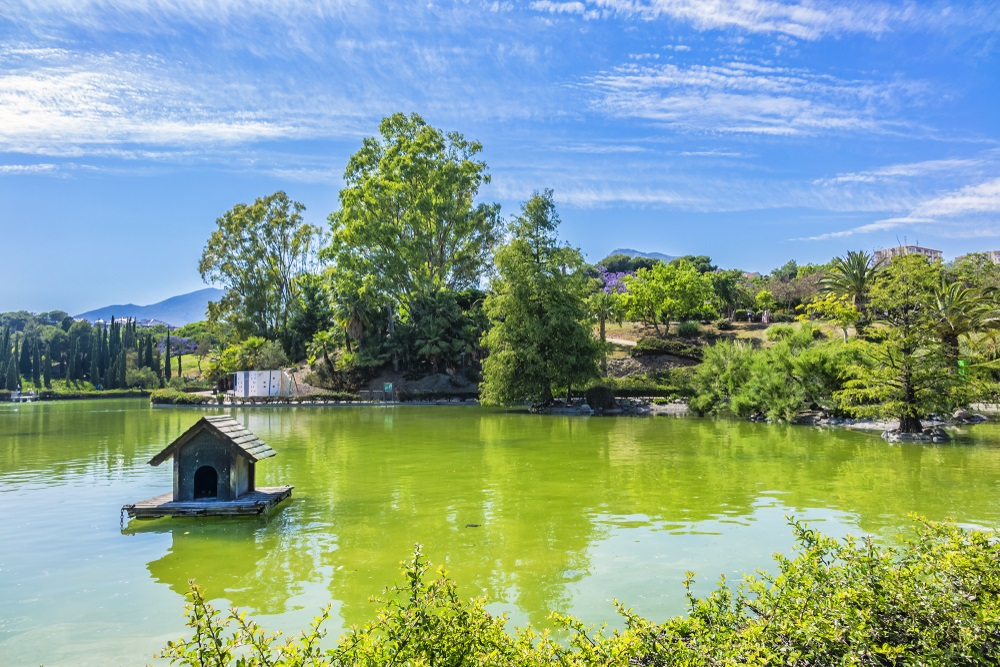 Uitzicht op het prachtige openbare Paloma Park (Parque De La Paloma) in Benalmadena - Andalusië, Spanje.